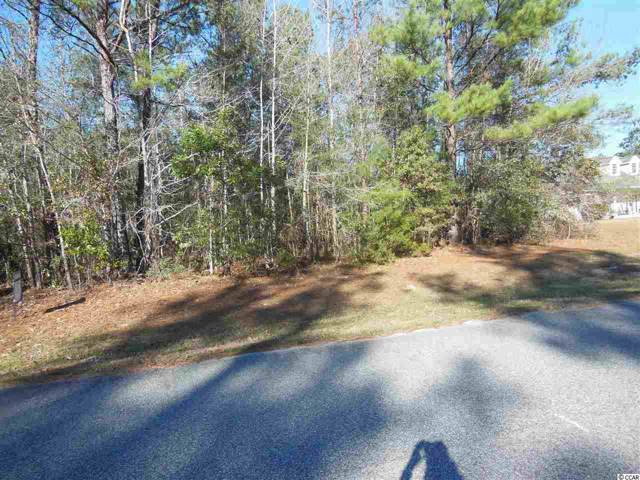 242 Cat Tail Bay Dr., Conway, SC 29527 (MLS #2000419) :: The Hoffman Group
