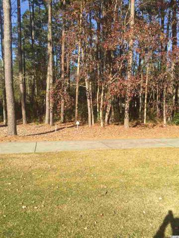 Lot C-9 Cameron Ct., Pawleys Island, SC 29585 (MLS #2000667) :: The Trembley Group | Keller Williams