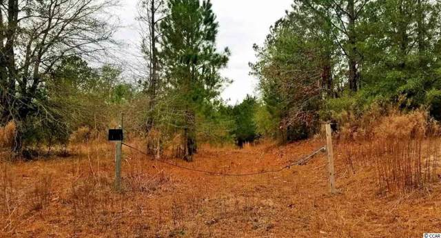 TBD Mobley Rd., Georgetown, SC 29440 (MLS #2000937) :: The Hoffman Group