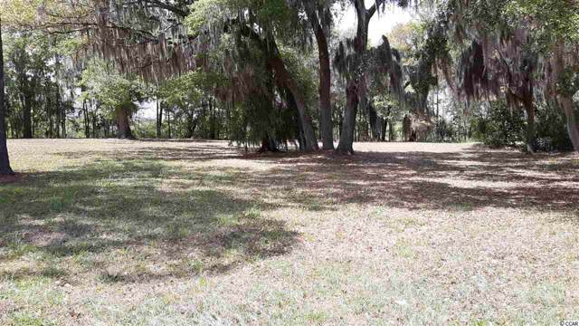 602 Chapman Loop, Pawleys Island, SC 29585 (MLS #2001015) :: Hawkeye Realty