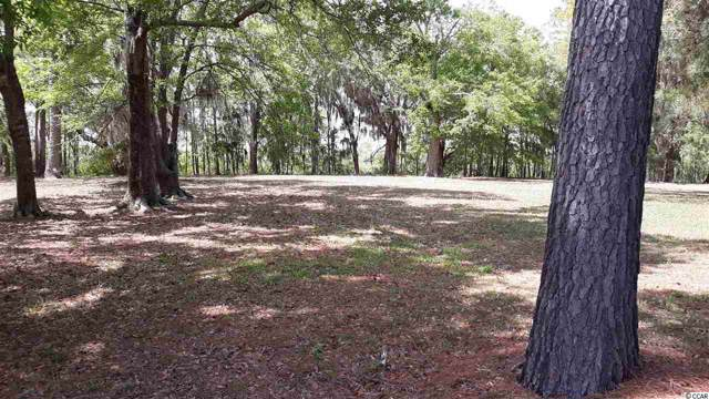 624 Chapman Loop, Pawleys Island, SC 29585 (MLS #2001017) :: Hawkeye Realty