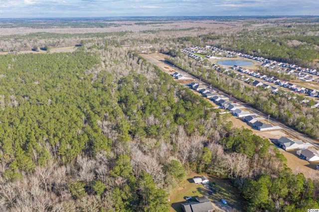Lot 6 Bear Bluff Rd., Conway, SC 29526 (MLS #2001396) :: The Litchfield Company