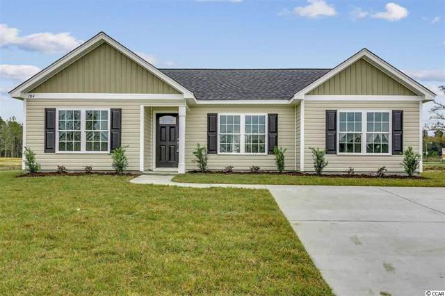 101 Pumpkin Ash Loop, Conway, SC 29527 (MLS #2001438) :: The Greg Sisson Team with RE/MAX First Choice
