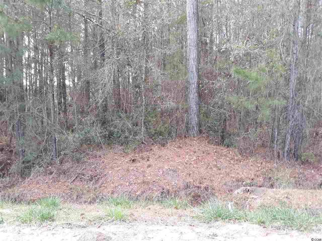 S of TRB-1E Highway 701 South, Conway, SC 29527 (MLS #2001542) :: Jerry Pinkas Real Estate Experts, Inc