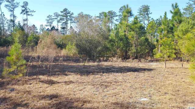 Lots 19, 20, 21 Sellers Rd., Conway, SC 29526 (MLS #2001626) :: Right Find Homes