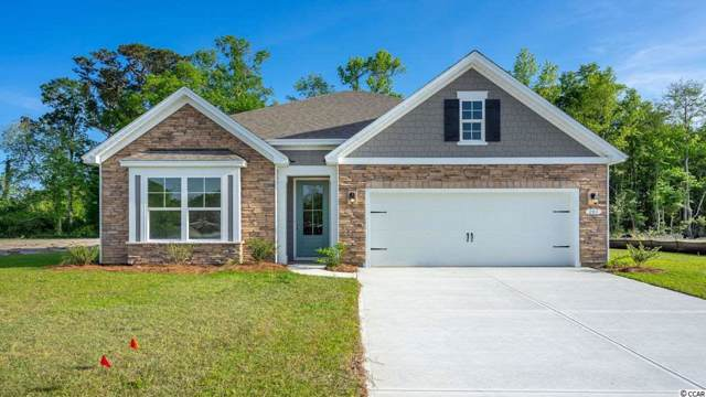 TBD Black Pearl Court, Pawleys Island, SC 29585 (MLS #2001870) :: The Hoffman Group