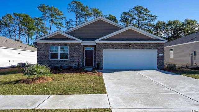 TBD Black Pearl Court, Pawleys Island, SC 29585 (MLS #2001871) :: The Hoffman Group