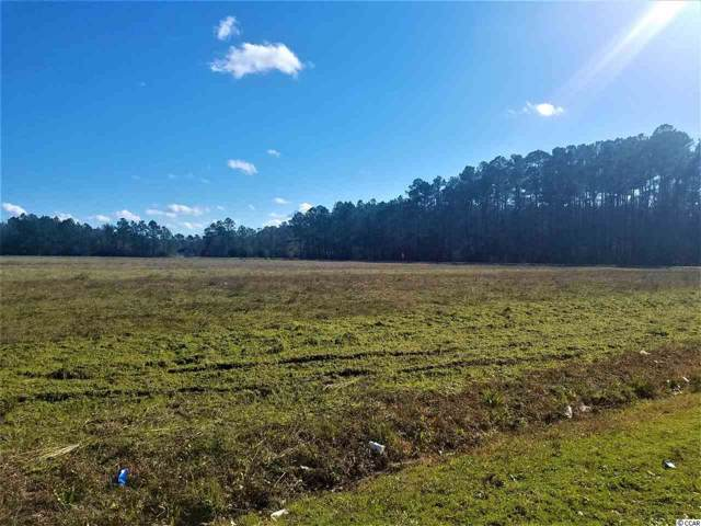 TBD Old Reaves Ferry Rd., Conway, SC 29526 (MLS #2001929) :: SC Beach Real Estate