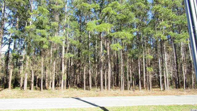 199 SW Persimmon Rd., Carolina Shores, NC 28467 (MLS #2002750) :: The Lachicotte Company