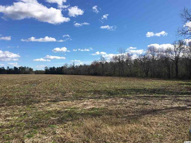TBD Salem Rd., Aynor, SC 29511 (MLS #2003000) :: The Greg Sisson Team with RE/MAX First Choice