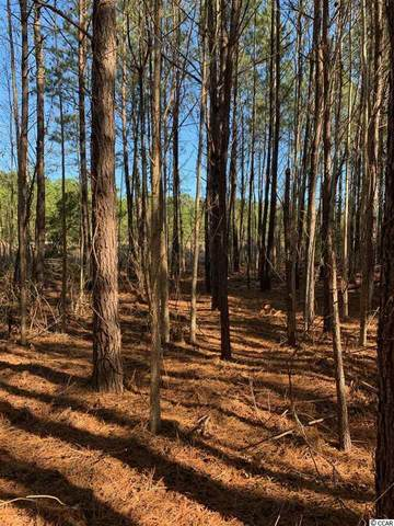 14.53 Highway 521, Andrews, SC 29510 (MLS #2003107) :: The Lachicotte Company