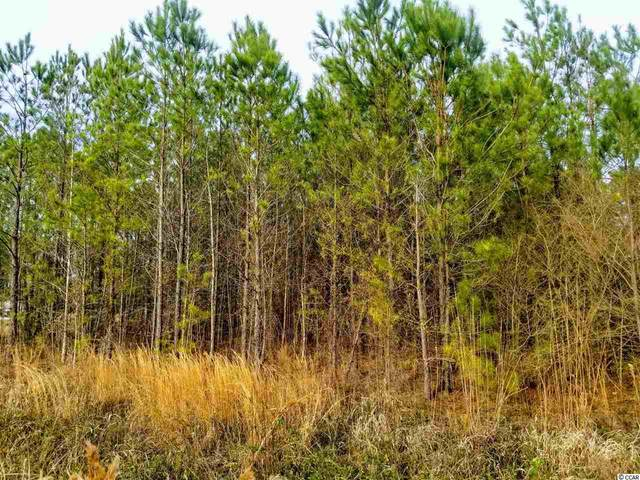 1781 E Highway 9 Business, Loris, SC 29569 (MLS #2003508) :: Right Find Homes