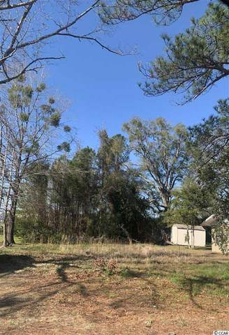 TBD Cottage Ln., Conway, SC 29526 (MLS #2003707) :: Right Find Homes