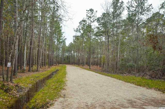 12 Mouzons Bluff Rd., McClellanville, SC 29458 (MLS #2004139) :: The Litchfield Company