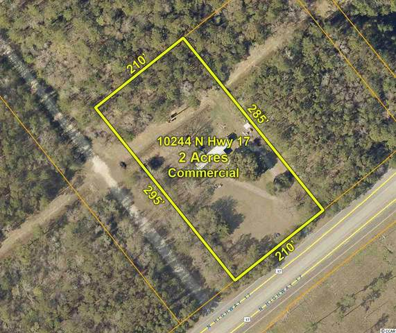 10244 Highway 17 North, McClellanville, SC 29458 (MLS #2004179) :: The Litchfield Company