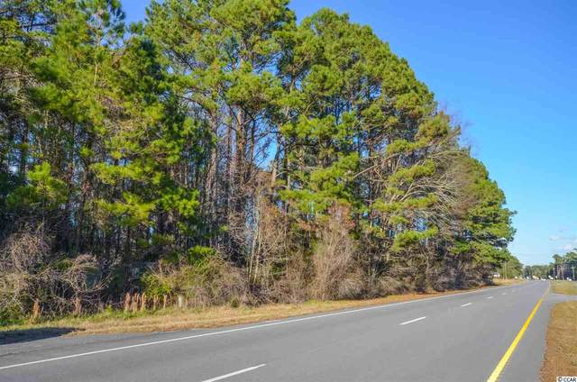 9904 Highway 17 North, McClellanville, SC 29458 (MLS #2004182) :: The Litchfield Company