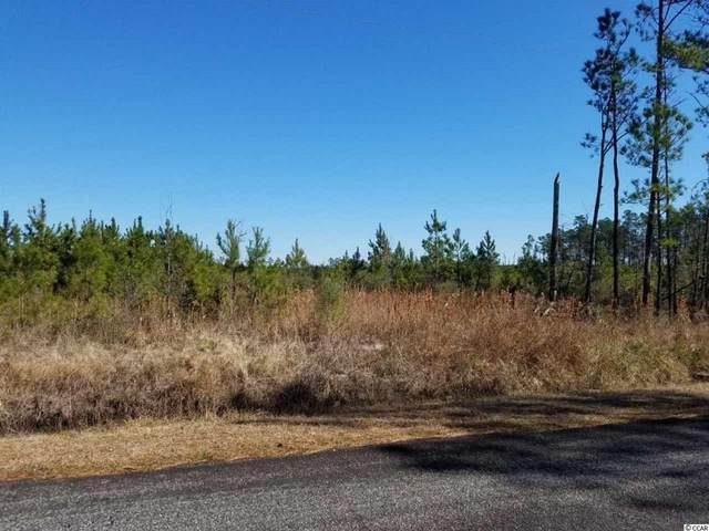 TBD Bigelow Dr., Andrews, SC 29510 (MLS #2004312) :: The Lachicotte Company