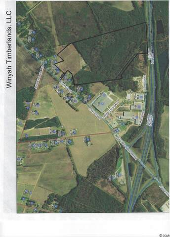tbd Lamar Hwy., Timmonsviile, SC 29161 (MLS #2004484) :: The Litchfield Company