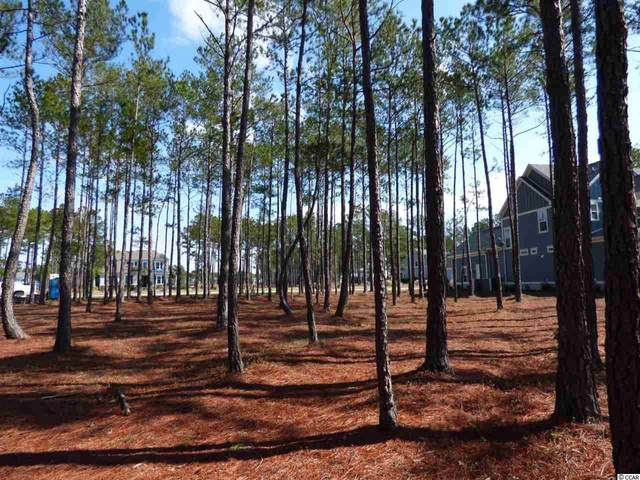 661 Waterbridge Blvd., Myrtle Beach, SC 29579 (MLS #2004514) :: SC Beach Real Estate