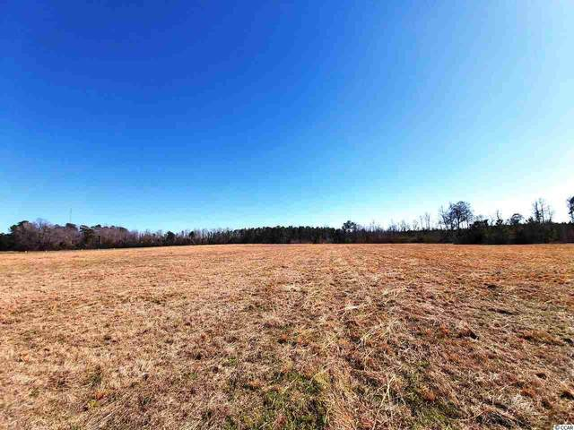 TBD Westwood Meadows Dr., Nichols, SC 29581 (MLS #2004668) :: Jerry Pinkas Real Estate Experts, Inc