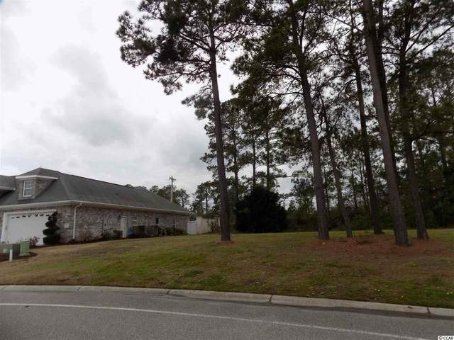 105 Waterfall Circle, Little River, SC 29566 (MLS #2005009) :: James W. Smith Real Estate Co.