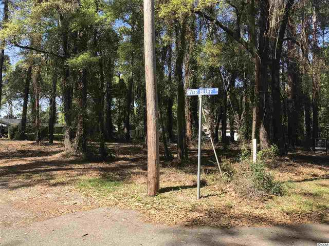 17 Riverbluff Trail, Pawleys Island, SC 29585 (MLS #2005087) :: Jerry Pinkas Real Estate Experts, Inc