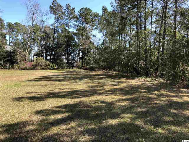 132 Swamp Fox Ln., Georgetown, SC 29440 (MLS #2005681) :: The Lachicotte Company