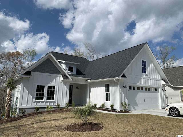 262 Rivers Edge Dr., Conway, SC 29526 (MLS #2006156) :: Jerry Pinkas Real Estate Experts, Inc