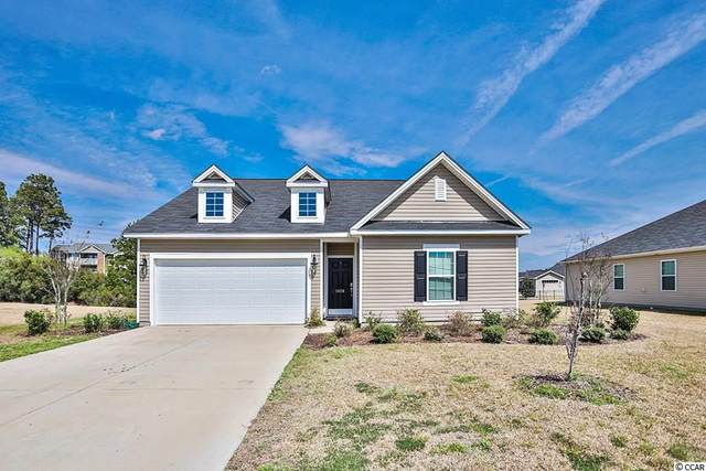 1408 Rainsbrook Ct., Conway, SC 29526 (MLS #2006362) :: Jerry Pinkas Real Estate Experts, Inc