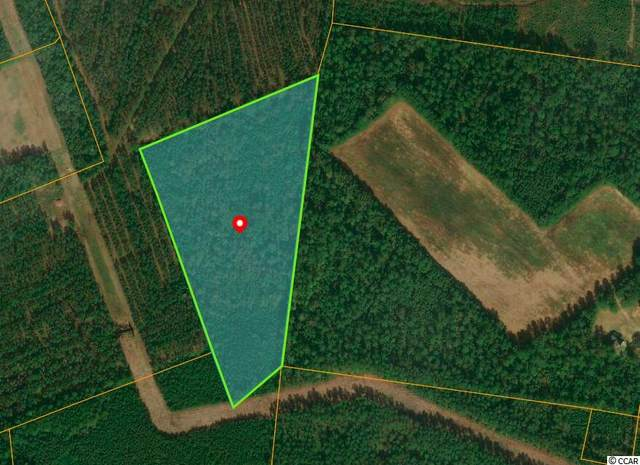 TBD Dirty Branch Rd., Conway, SC 29527 (MLS #2006391) :: Right Find Homes