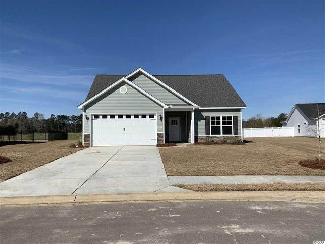 232 Maiden's Choice Dr., Conway, SC 29527 (MLS #2006905) :: Jerry Pinkas Real Estate Experts, Inc