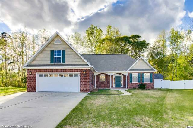 217 White Water Loop, Conway, SC 29526 (MLS #2007052) :: Jerry Pinkas Real Estate Experts, Inc