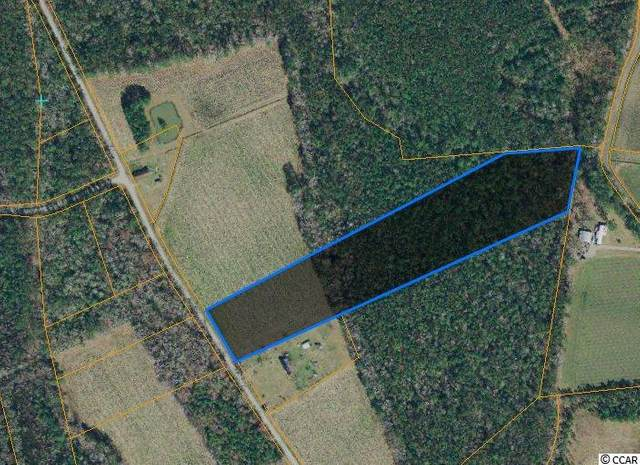 Tract A Dukes Rd., Conway, SC 29526 (MLS #2007259) :: Jerry Pinkas Real Estate Experts, Inc