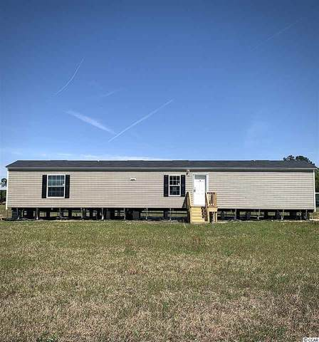 7076 Black Creek Rd., Nichols, SC 29581 (MLS #2007272) :: Jerry Pinkas Real Estate Experts, Inc