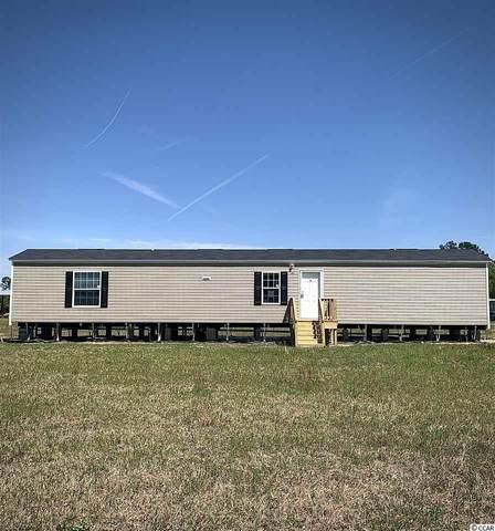 7076 Black Creek Rd., Nichols, SC 29581 (MLS #2007272) :: The Litchfield Company