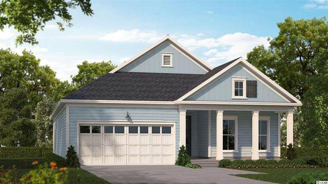 243 Yellow Rail St., Murrells Inlet, SC 29576 (MLS #2007359) :: The Lachicotte Company