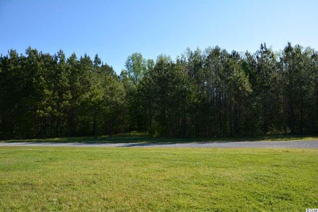TBD Kayla Circle, Longs, SC 29568 (MLS #2007373) :: Jerry Pinkas Real Estate Experts, Inc