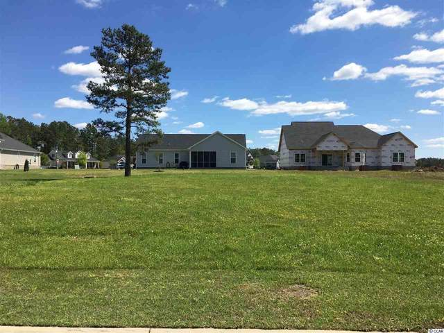 4217 Ridgewood Dr., Conway, SC 29526 (MLS #2007396) :: The Litchfield Company