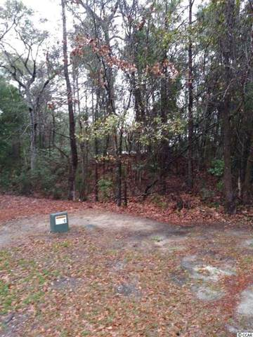 149 Widgeon Rd., Georgetown, SC 29440 (MLS #2007398) :: Welcome Home Realty