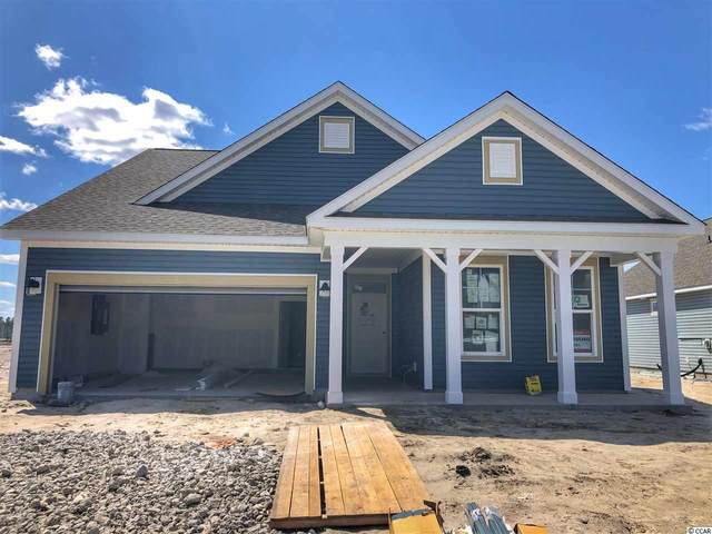 563 Kapalua Loop, Little River, SC 29566 (MLS #2007491) :: Right Find Homes