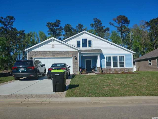 117 Copper Leaf Dr., Myrtle Beach, SC 29588 (MLS #2007535) :: The Litchfield Company