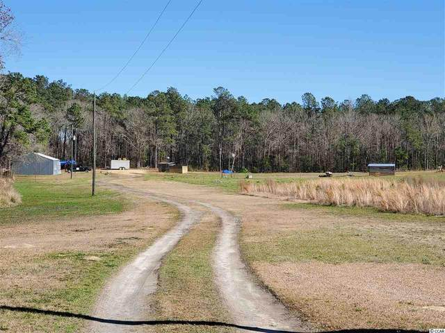 7724 Hunting Swamp Rd., Conway, SC 29527 (MLS #2007576) :: The Lachicotte Company