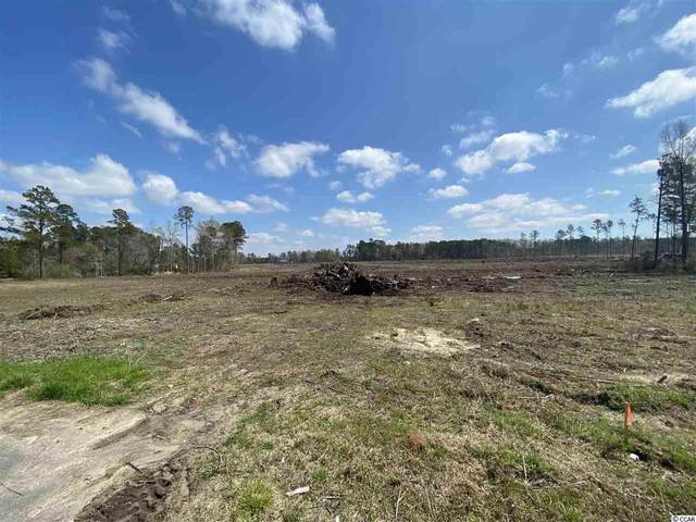 TBD Wise Rd., Conway, SC 29526 (MLS #2007710) :: Garden City Realty, Inc.