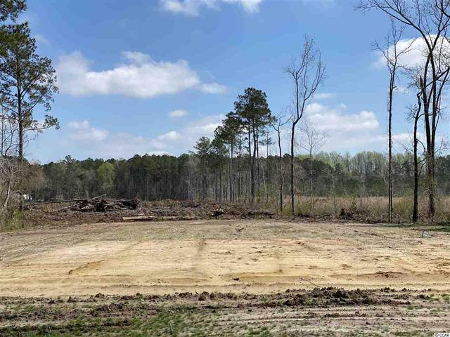 TBD Wise Rd., Conway, SC 29526 (MLS #2007711) :: Garden City Realty, Inc.