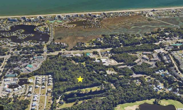 TBD Black Gum Rd., Pawleys Island, SC 29585 (MLS #2007833) :: Grand Strand Homes & Land Realty
