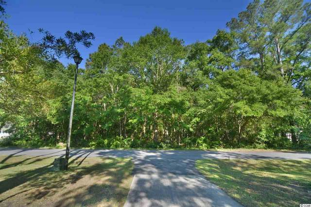 92 Robin Dr., Georgetown, SC 29440 (MLS #2008967) :: Armand R Roux | Real Estate Buy The Coast LLC
