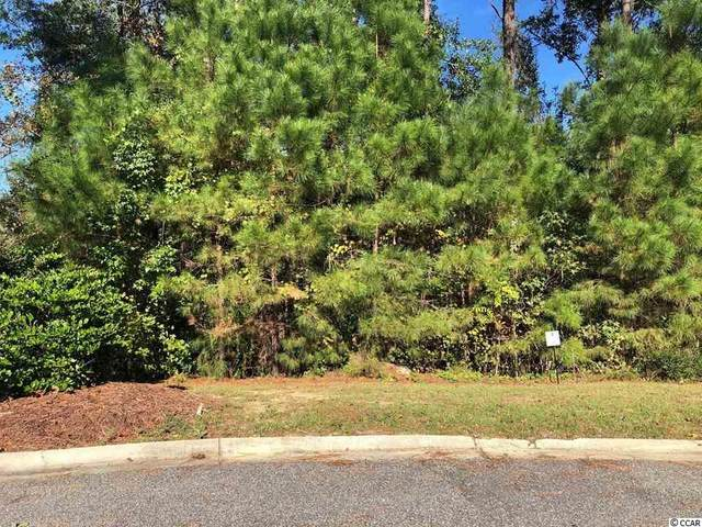 Lot 16 Rivers Edge Dr., Conway, SC 29526 (MLS #2009034) :: Grand Strand Homes & Land Realty