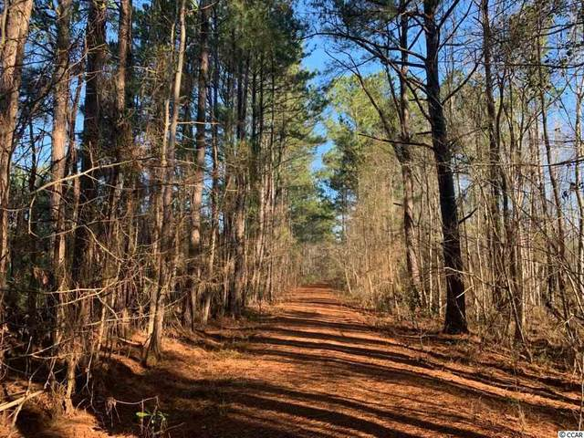 000 Cumbie Rd., Andrews, SC 29510 (MLS #2009359) :: James W. Smith Real Estate Co.
