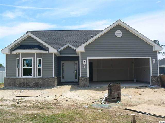 206 Apex Dr., Conway, SC 29526 (MLS #2009700) :: Leonard, Call at Kingston
