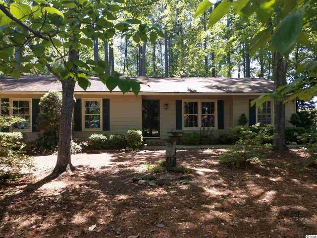 2913 South Island Rd., Georgetown, SC 29440 (MLS #2010058) :: The Lachicotte Company